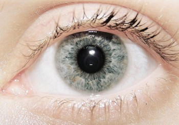 Silver / Grey Eyes are extremely rare