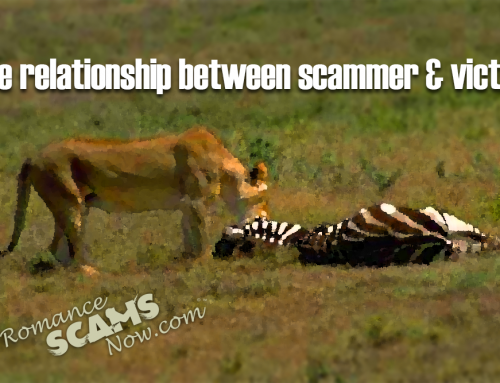 RSN™ Guide: What Is The Relationship Between Scammer And Victim?