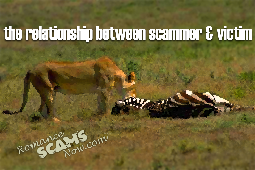 The Relationship Between Scammer & Victim