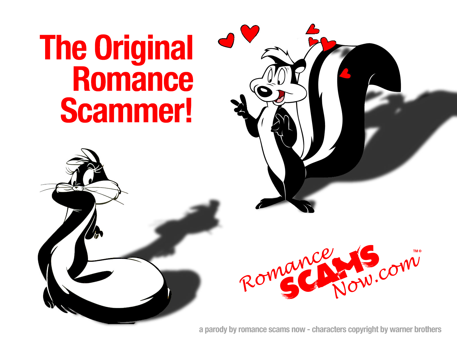 SCARS ™ / RSN™ Anti-Scam Poster 13
