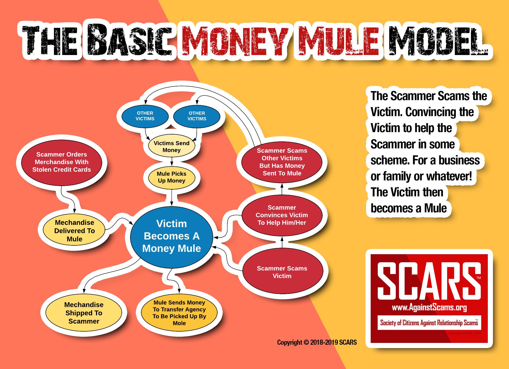 The Basic Money Mule Model!