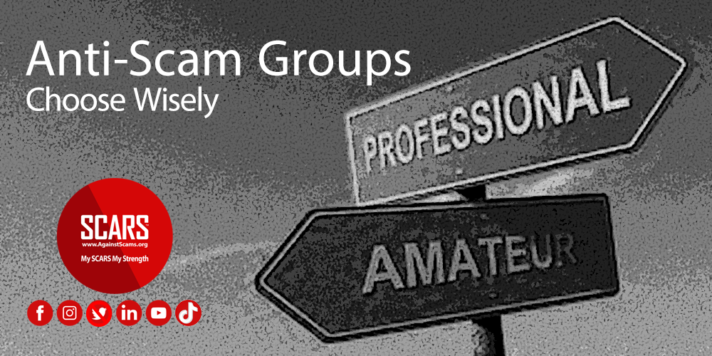 Amateurs vs. Professional Anti-Scam Groups