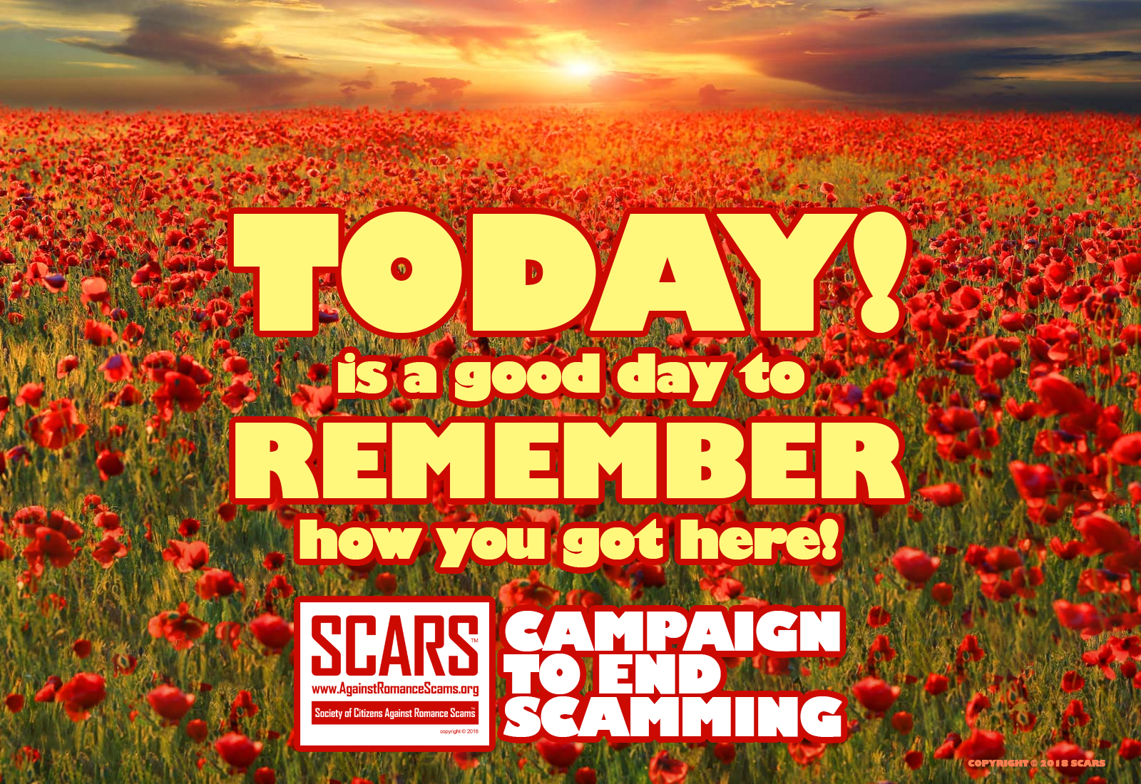 SCARS ™ / RSN™ Anti-Scam Poster 5