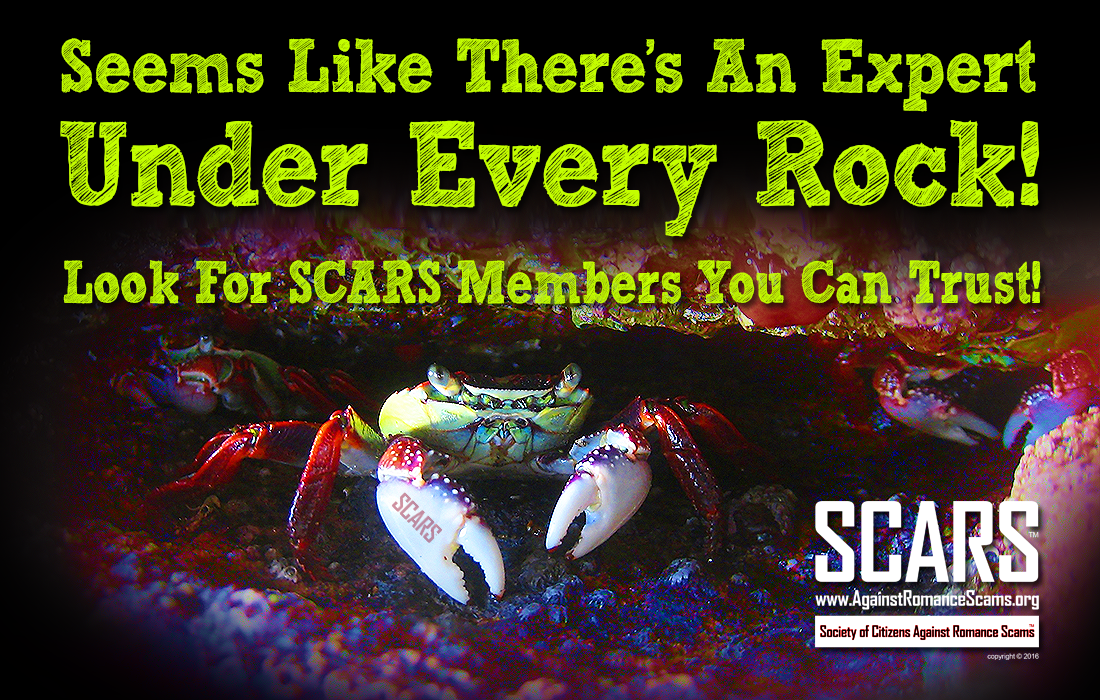 SCARS ™ / RSN™ Anti-Scam Poster 6