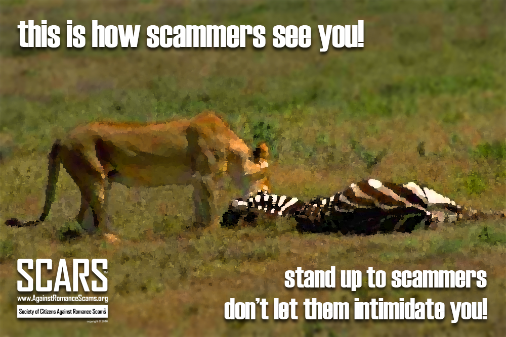 SCARS ™ / RSN™ Anti-Scam Poster 22