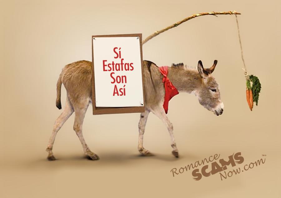 SCARS ™ / RSN™ Anti-Scam Poster: Burro 1