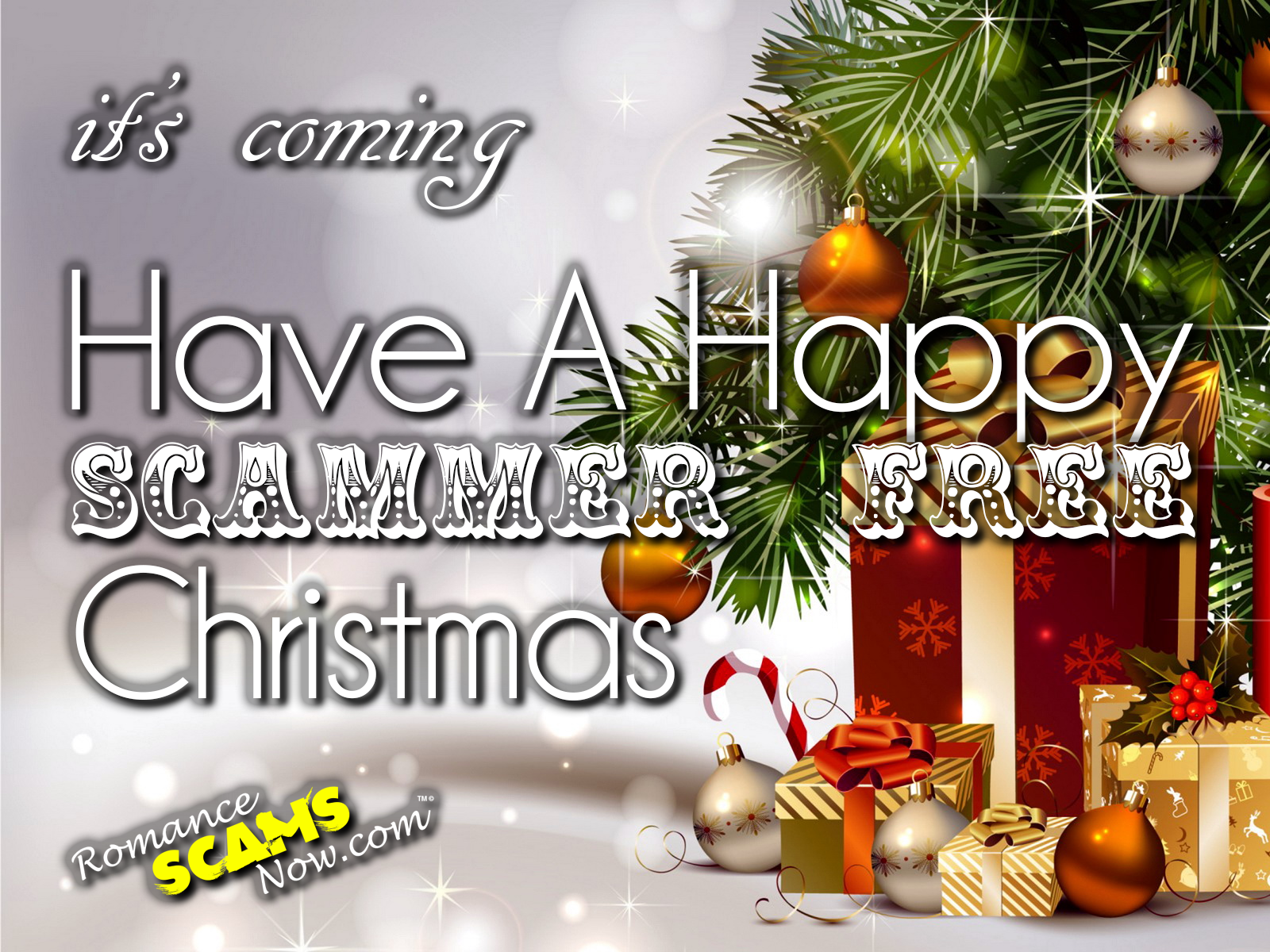 SCARS|RSN™ Anti-Scam Poster: Scammer Free Christmas 1