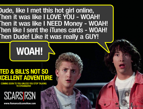 Ted & Bill's Not So Excellent Adventure – SCARS|RSN™ Anti-Scam Poster