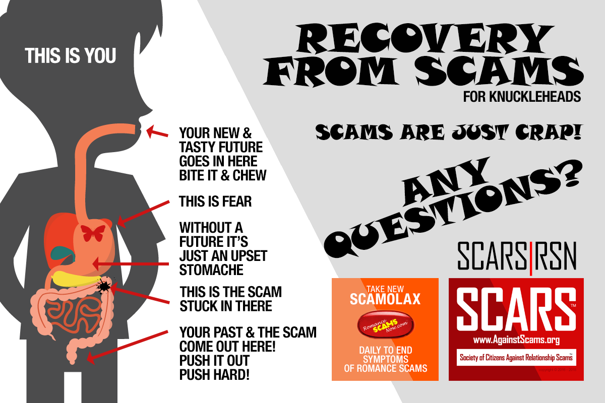 Scams Are Just Crap - SCARS|RSN™ Anti-Scam Poster 17