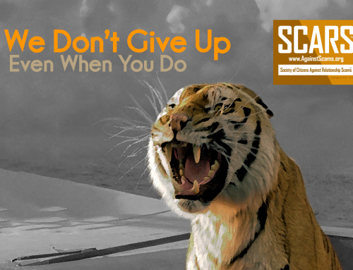 We Never Give Up – SCARS|RSN™ Anti-Scam Poster