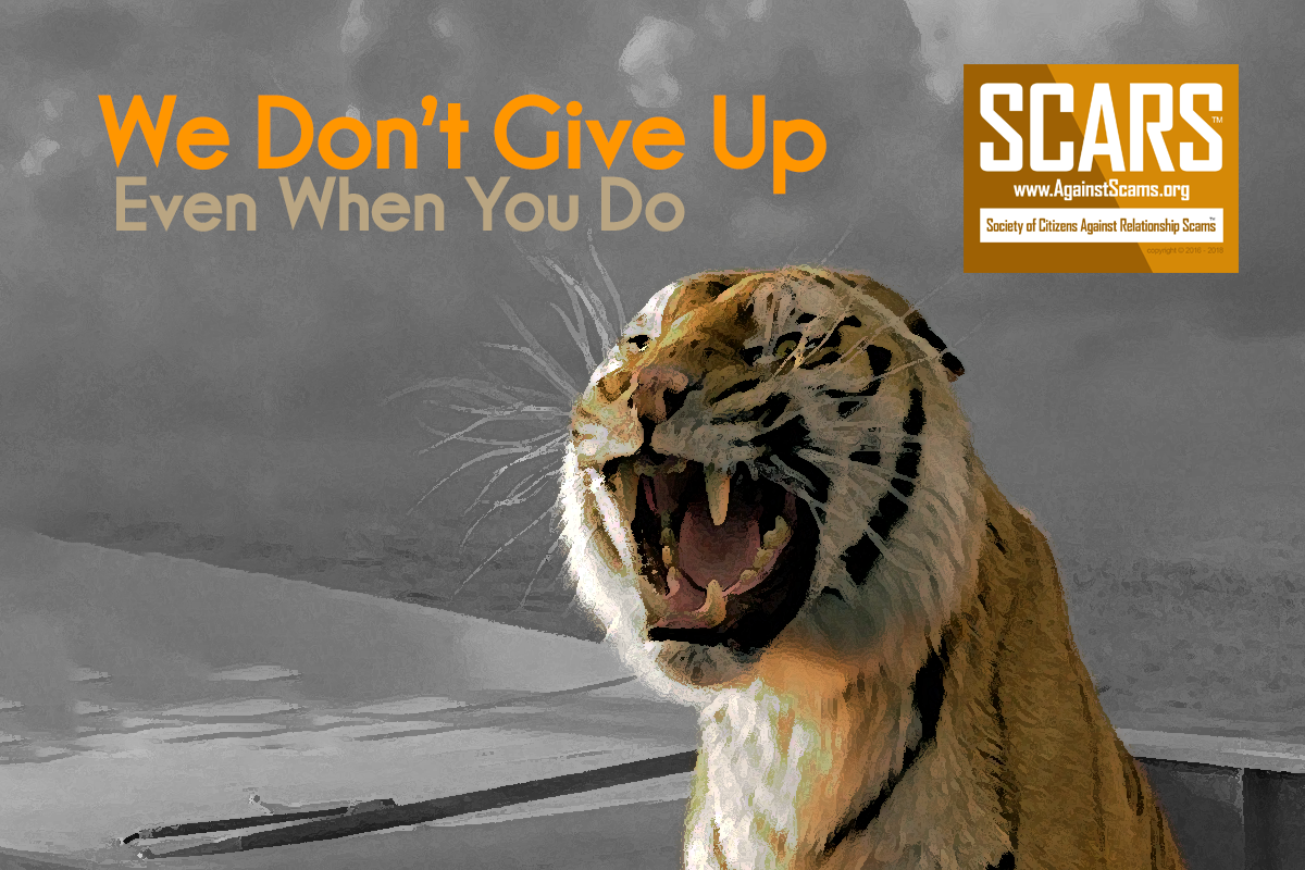 We Never Give Up - SCARS|RSN™ Anti-Scam Poster 23
