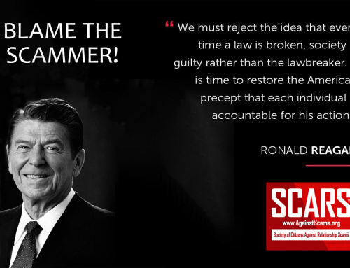 Blame The Scammer – SCARS|RSN™ Anti-Scam Poster