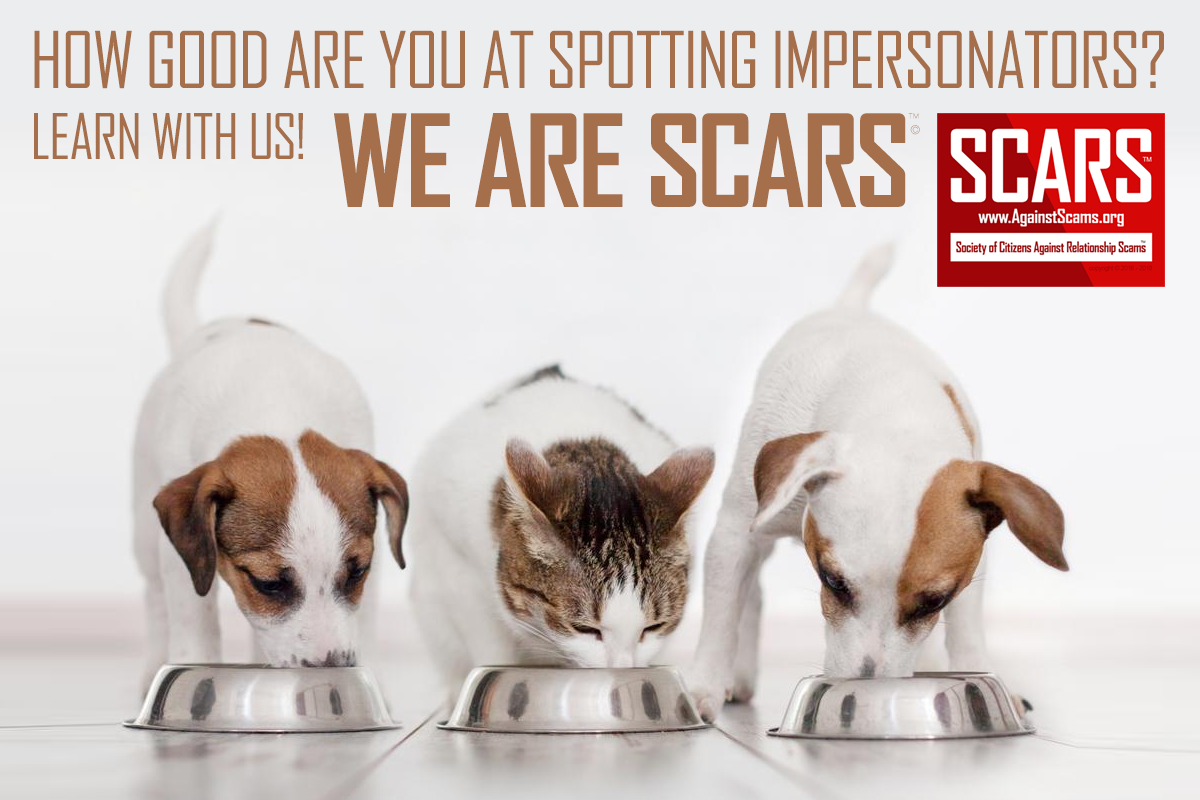 Always Be On Guard For Impersonators & Impostors - SCARS™ Anti-Scam Poster 1