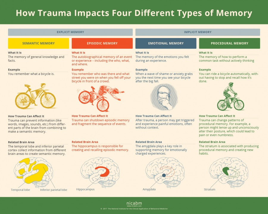 SCARS™ Psychology of Scams: How Trauma Can Impact Four Types of Memory [Infographic] 6