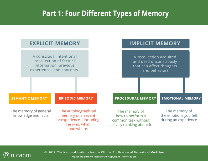 SCARS™ Psychology of Scams: How Trauma Can Impact Four Types of Memory [Infographic] 7