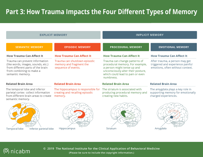 SCARS™ Psychology of Scams: How Trauma Can Impact Four Types of Memory [Infographic] 8