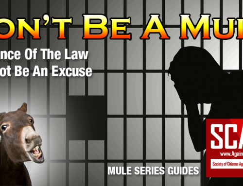 SCARS|EDUCATION™ Guide: Money Mule Series – Legal Responsibility