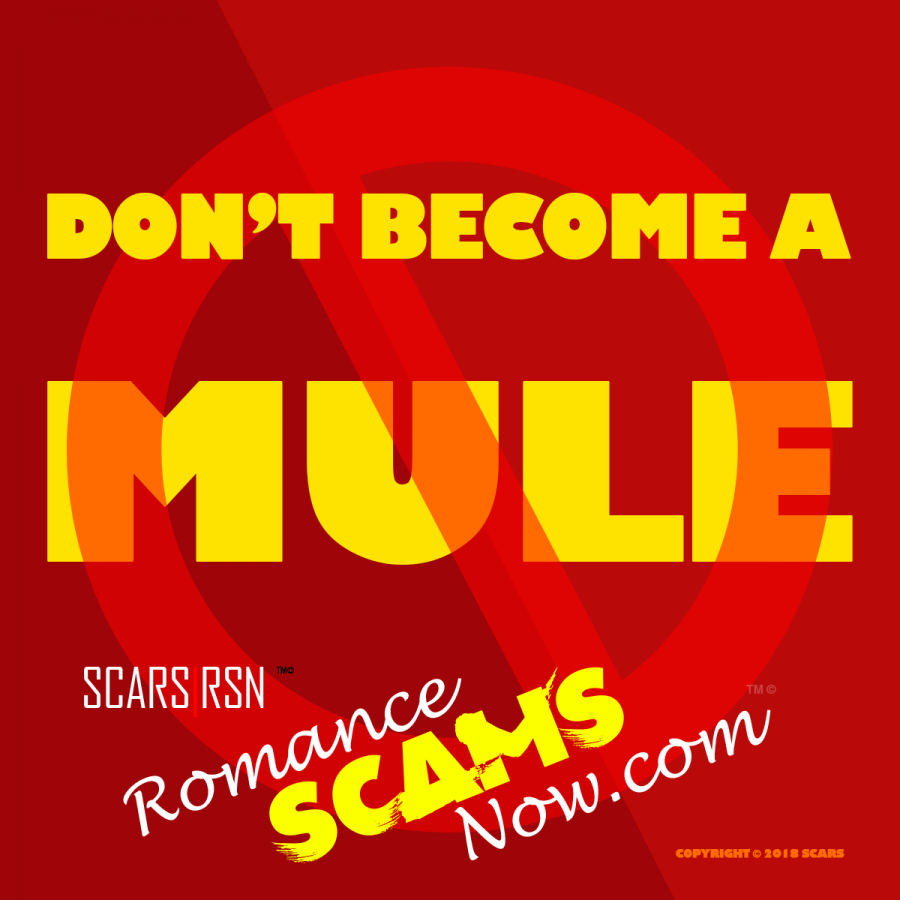 SCARS™ Guide: Money Mule Series - Legal Responsibility 5