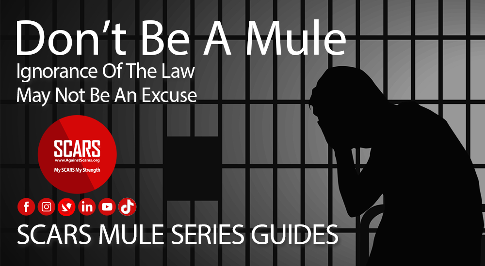 SCARS-mule-series-guides-2021