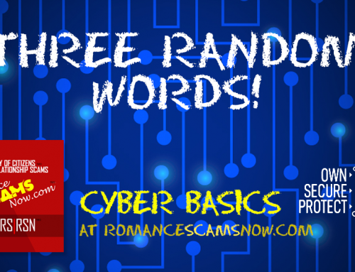 SCARS|EDUCATION™ Cyber Basics: Three Random Words