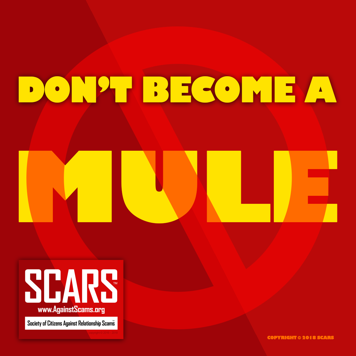 SCARS™ Special Report: What Are Scammer Money Mules? 7