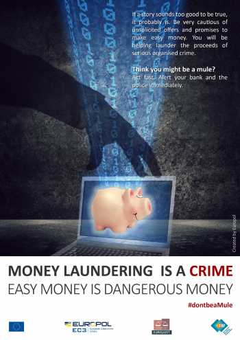 SCARS™ Special Report: Criminal Crack Down On Money Mules Worldwide 12