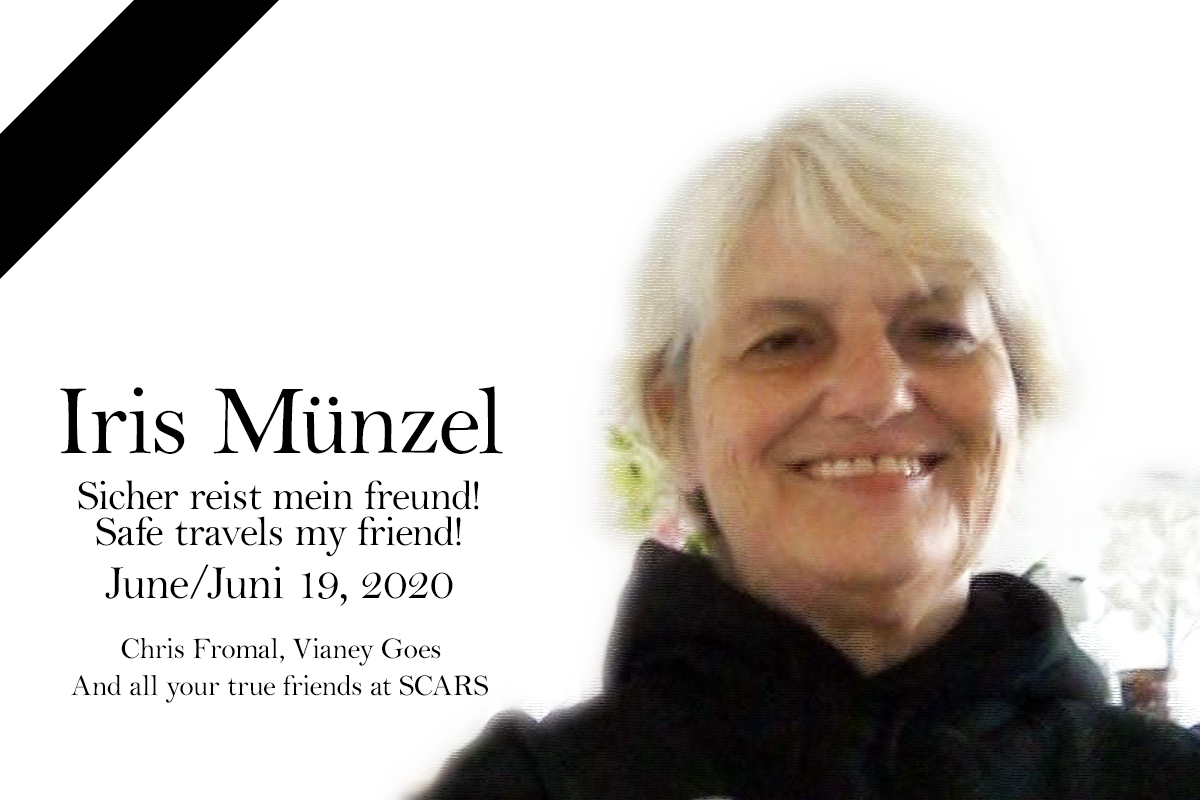 For Iris Münzel - Today is a day of loss 10