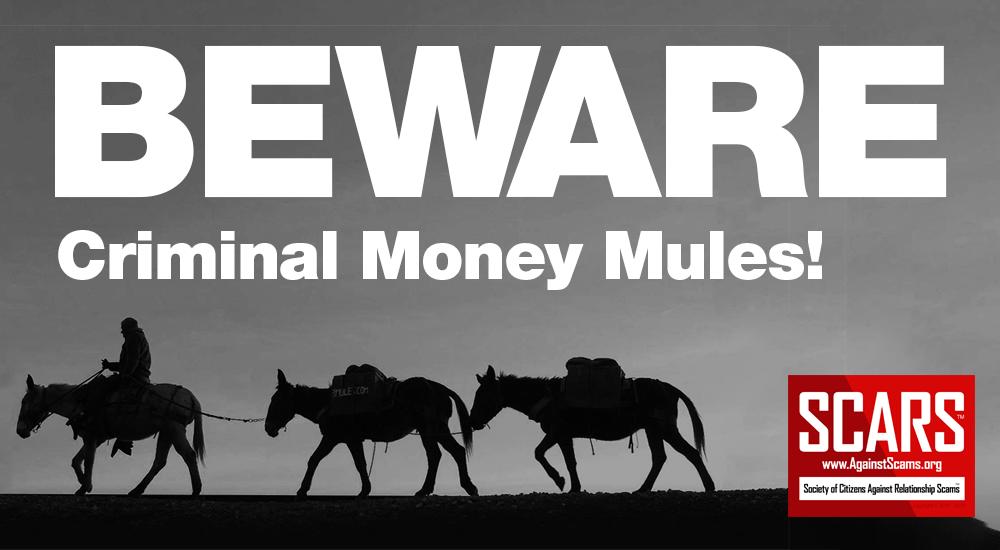 Criminal Money Mules
