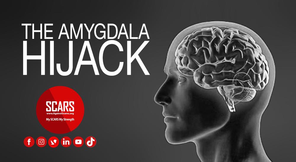 amygdala-hijack-banner
