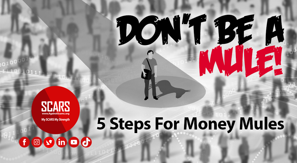 5-steps-fro-money-mules