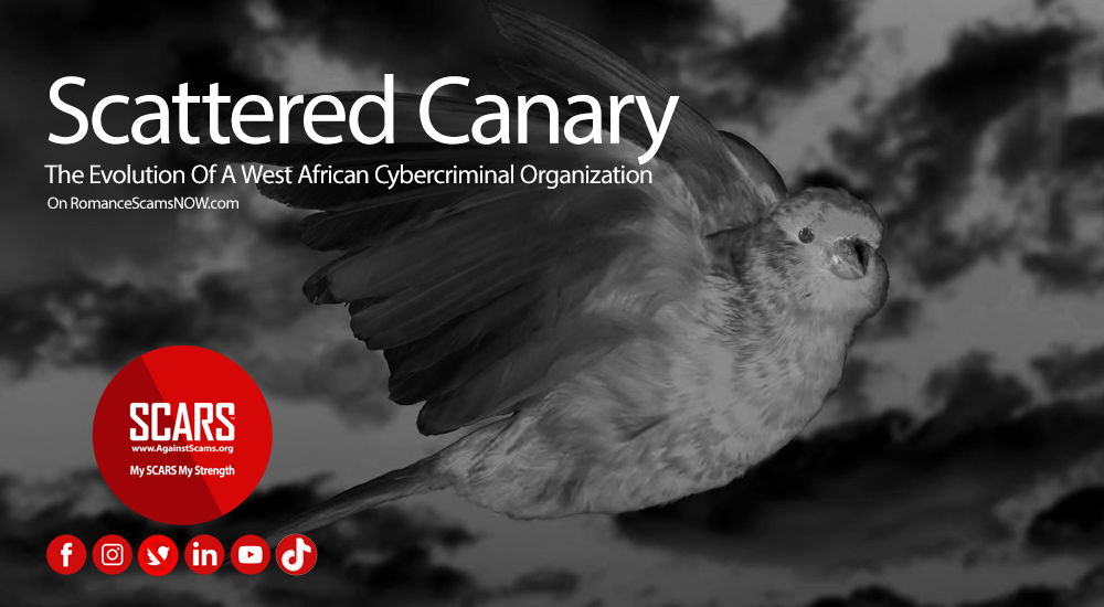 Scattered-Canary
